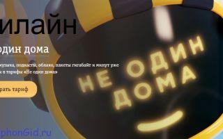Билайн — тариф «Не один дома» описание и стоимость