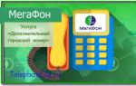 Услуга Мегафон «Дополнительный городской номер»