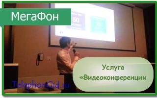 Услуга Мегафон «Видеоконференции»