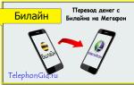 Как переводить деньги с Билайна на Мегафон