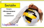 Услуга Билайн «Международная связь» (предоплата)