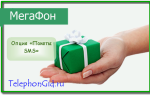 Опция «Пакеты SMS» Мегафон
