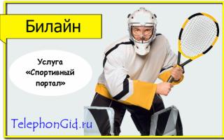 Услуга Билайн «Спортивный портал»