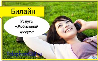 Услуга Билайн «Мобильный форум»