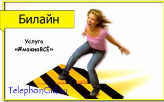 Услуга Билайн «#можноВСЁ»