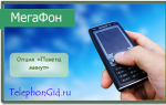 Опция Мегафон «Пакеты минут»