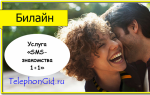 Услуга Билайн «SMS-знакомства 1+1»