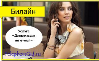 Услуга Билайн «Детализация на e-mail»