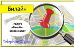 Услуга «Билайн-координаты»