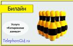 Услуга Билайн «Копирование данных»