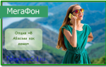 Опция «В Абхазии как дома» Мегафон