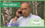 Услуга «Я в сети» Мегафон