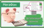 Как сделать распечатку звонков и SMS Мегафон