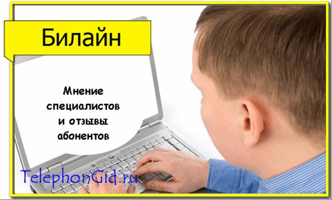 Билайн детализация услуг