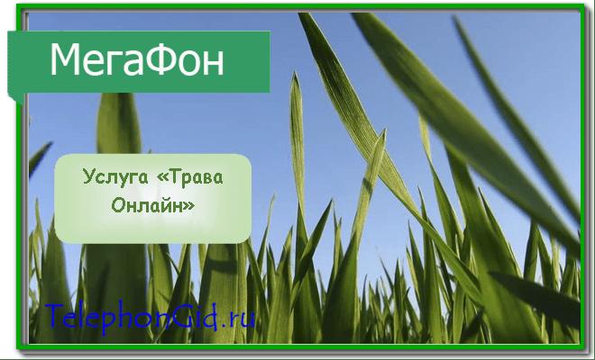 Трава Онлайн Мегафон